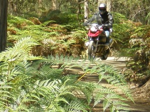 BMW R1200GS in Tasmania